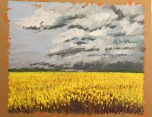 Rape Fields, East Lothian, Scotland